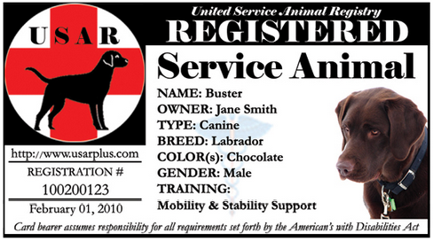 image relating to Printable Ada Service Dog Card titled USARplus states defamation Support Canine Central